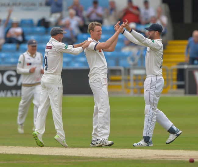 Steve Patterson celebrates a wicket. Picture: Ray Spencer