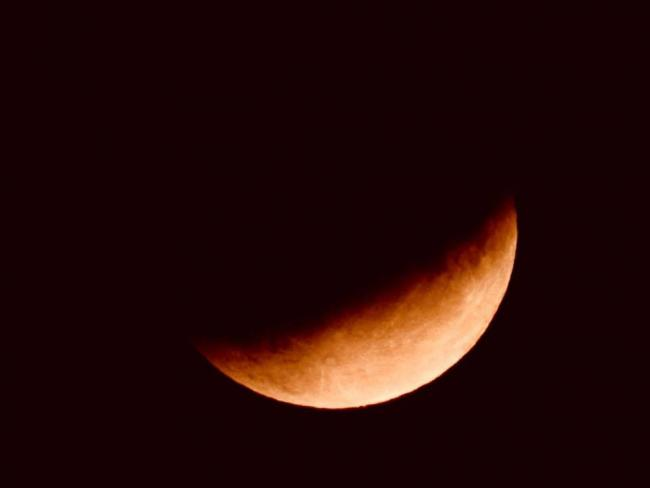 LUNAR SHOW: The Press Camera Club member Janet Danks took this picture of the partial lunar eclipse on Tuesday night