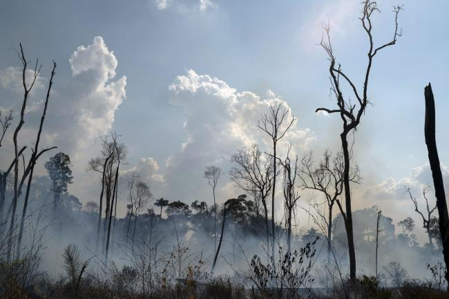 Fire consuming an area in the Alvorada da Amazonia region, in Novo Progresso, Para state, Brazil. Picture: AP/Leo Correa