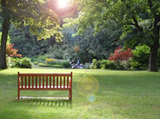 The Peace Garden - Online memorial website