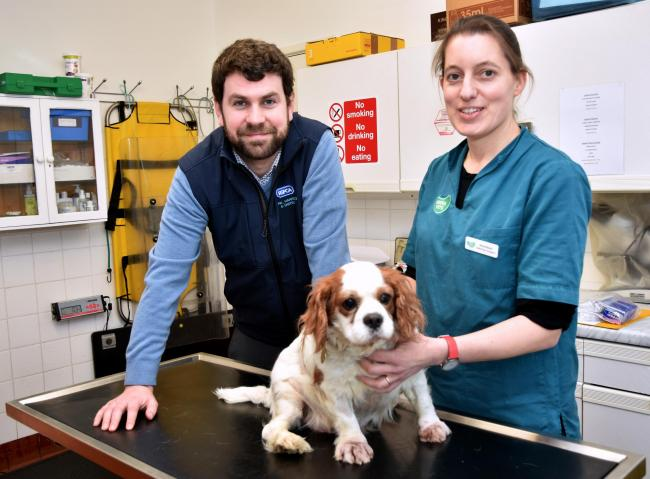 RSPCA York branch manager Peter Gorbert and vet Anne Busch, of Green Vets, with Charlie the dog in the treatment room at the animal home Picture: Frank Dwyer