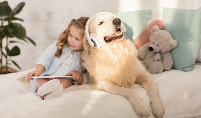 PAWFECT NEWS: Spotify launches playlists for pets