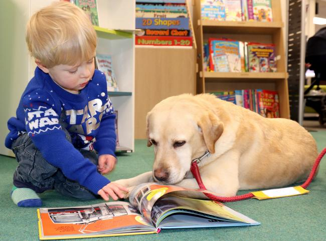 A child taking part in the Read2Dogs scheme