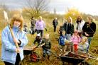 Children from Heslington and Badger Hill Pre-Schools, York, plant trees at St Nicholas Fields Nature Reserve as part of Sainsbury's Active Kid's Scheme