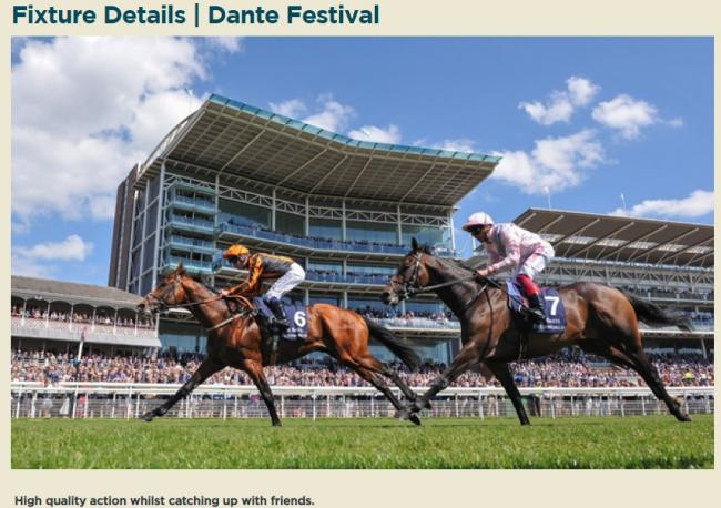 The Dante Festival at York Racecourse next month -tickets are still on sale