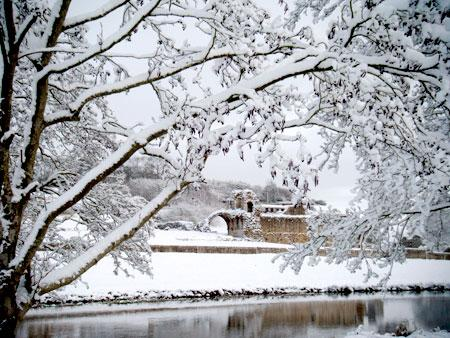 Pictures from Kirkham Abbey near Westow sent in by Christine Botham of Westow.