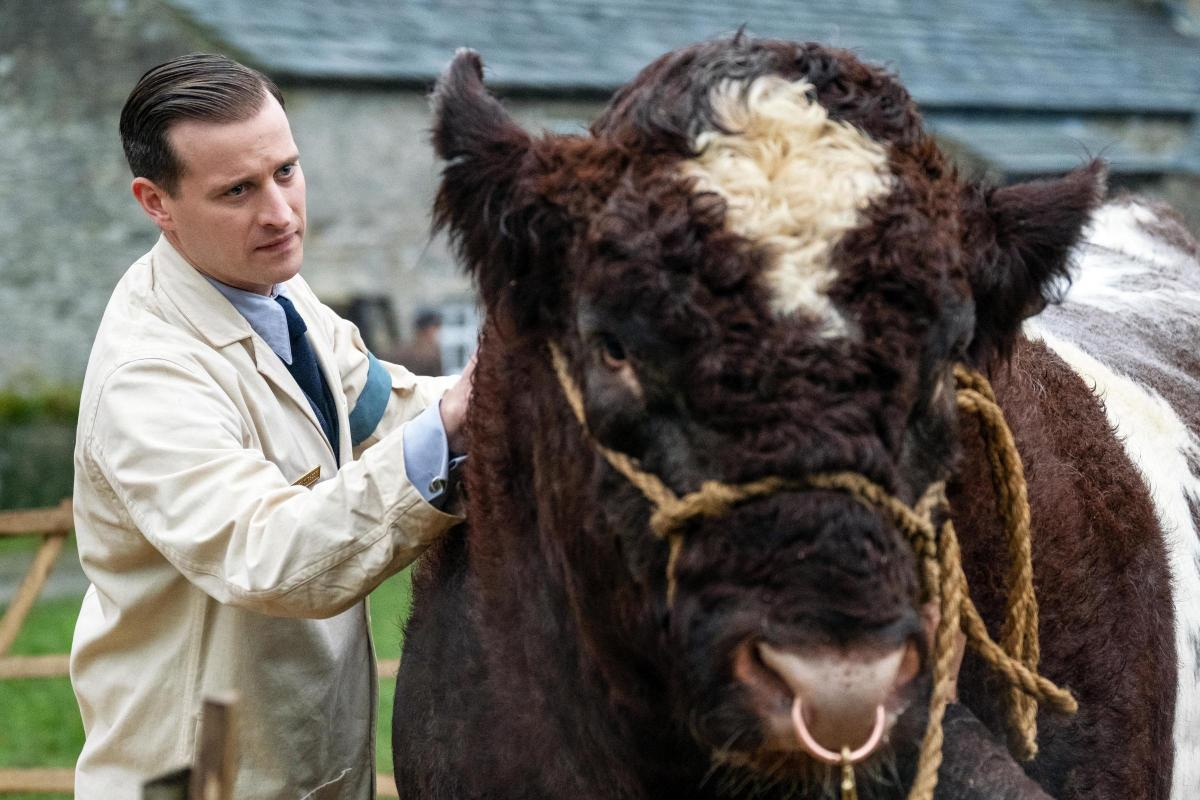 Channel 5's remake of classic All Creatures Great And Small begins tonight    York Press