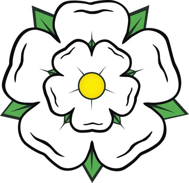 The white rose of Yorkshire (PICTURE: Pixabay.com).