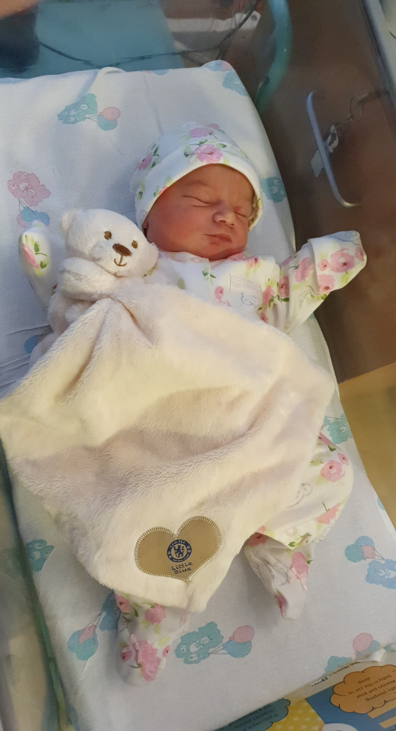 York Press: Elsie-Ray Joan Thornton born  on August 30 weighing 7lb 6oz at York Hospital to Chantel Thornton from Hull Road, York.