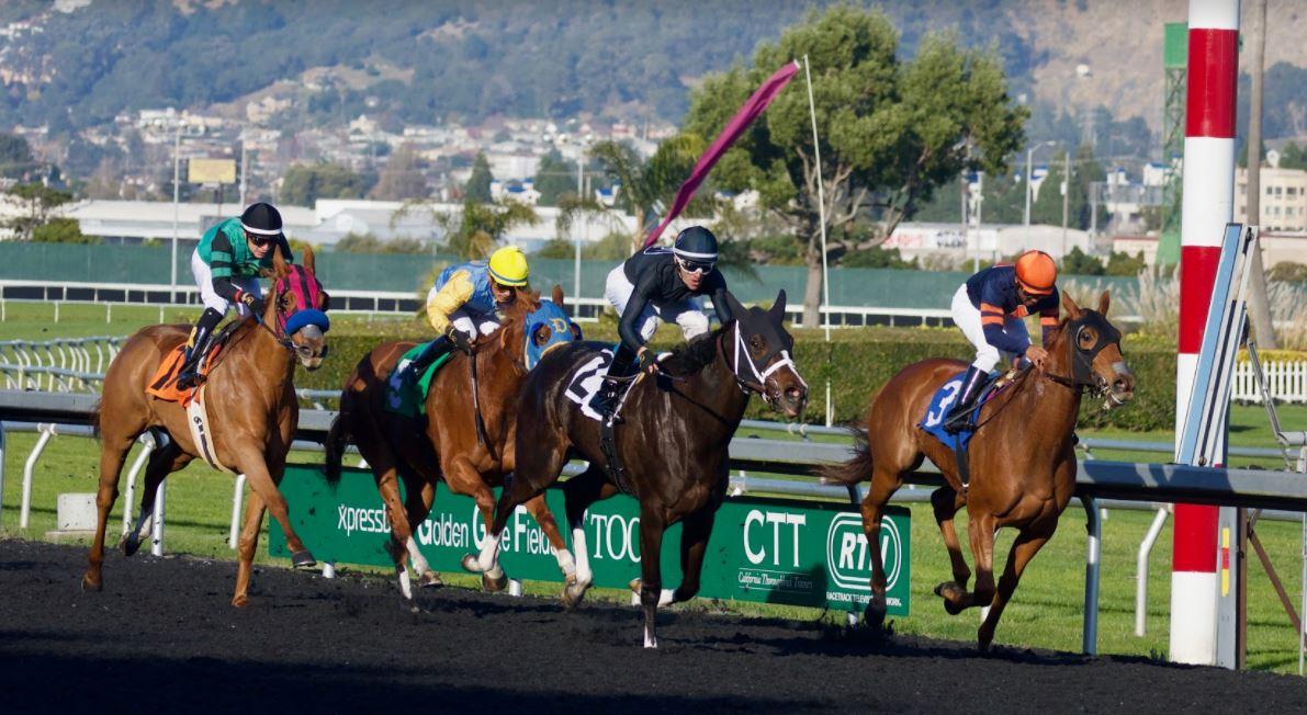 uk horse racing betting tips