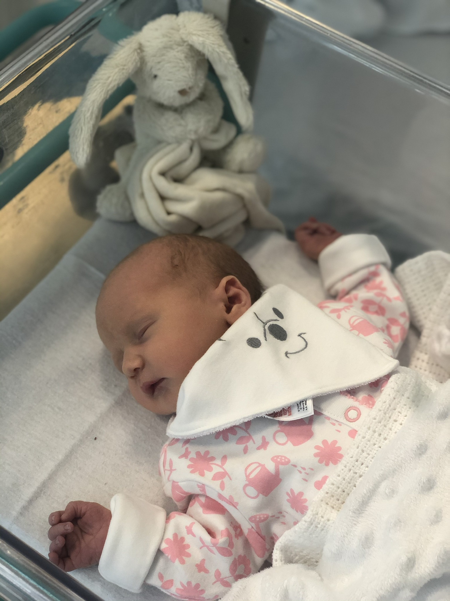 York Press: Lexi Melodie Mizon born in York Hospital on August 21 to  Haley and Paul Mizon from Acomb. Lexi weighed 7lbs 8.5oz.