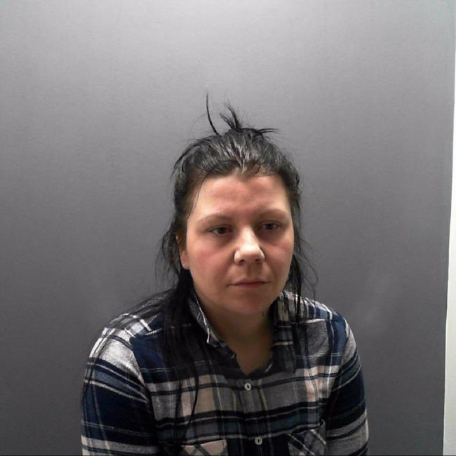 Burglar Kelly Ann Harrison convicted of theft offences