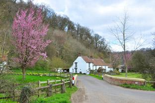 York Press: Ashberry Farm is along the way to Caydale Mill
