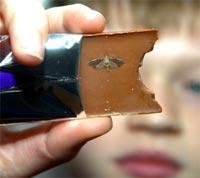 Cameron Murray with the moth he claims was found on a Cadbury's Chocolate bar