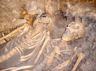 Skeletons previously unearthed at the Battle of Towton site