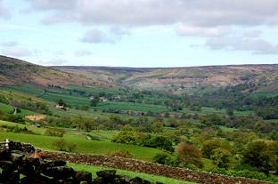 York Press: The view across Farndale to the moors where Jenny Bradley probably roamed
