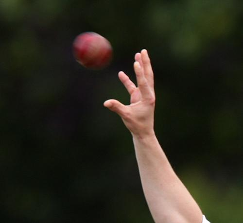 York Press: Pilmoor Cricket League: Acomb go top of division two