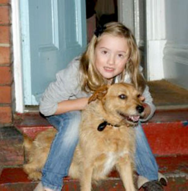 Missing dog turns up 30 miles away from york press for Lastingham terrace york