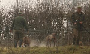 A photograph taken at the scene of the badger baiting on  farmland at Howsham, near Malton