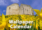 Download this month's wallpaper calendar