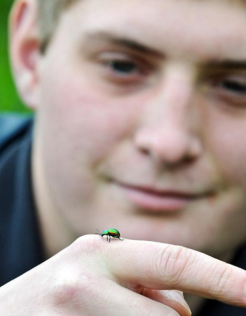 Askham College Student Ben Thompson with one of the tansy beetles