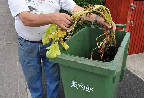 Plan to charge for emptying green bins
