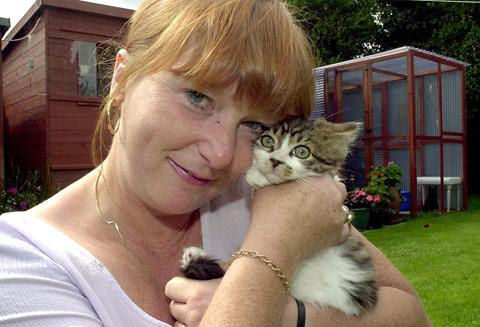 Jackie Bower of the Black Cat Rescue Centre in North Duffield who is appealing for homes and food for her many residents