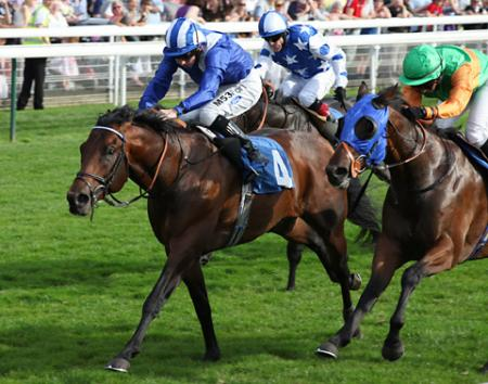 Heeraat ridden by Paul Hanagan won the York 800 Stakes with Hamza, second, and Gabriel's Lad, third