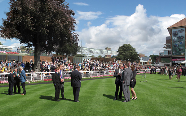 An artist's impression of the parade ring at York Racecourse