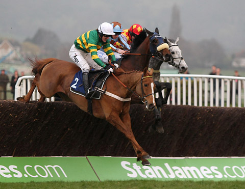 Divers, far right, will vy for honours once more with Quantitativeeasing, far left, at Cheltenham