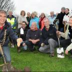 York Press: The Lord Mayor of York, Keith Hyman, plants the sapling at Willow Bank in New Earswick, as part of a scheme in which volunteers, some of whom are pictured, planted 420 trees
