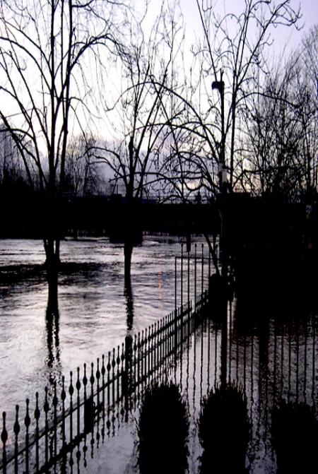 The riverbank looking north from the flood gate at Earlsborough Terrace by Leo Enticknap