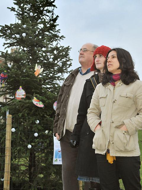 At the vandalised Christmas tree at Acomb Green are, from left, Keith Myers, Nuala Meek, and Jude Johnston