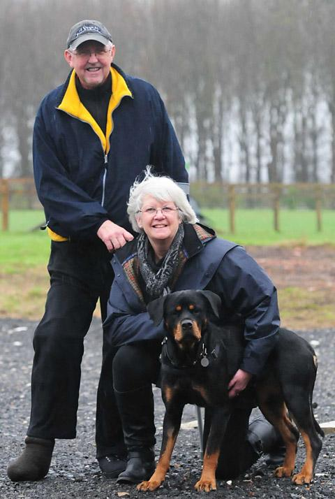 Linda and Trevor Hodgson with Lexi, the 500th dog the charity has re-homed