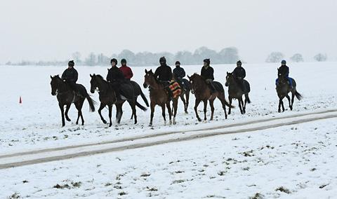 Racehorses are exercised in the snow on the gallops at Malton
