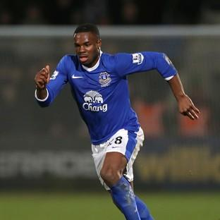 Victor Anichebe, pictured, and Park Ji-sung were subjected to racial abuse by a spectator
