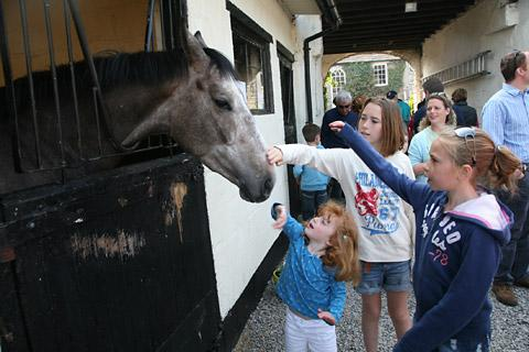 Youngsters enjoy meeting a race horse at the Middleham Stables Open Day