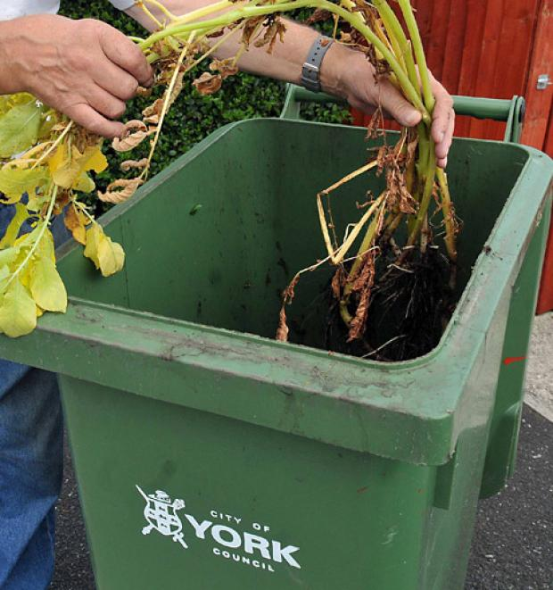 New green bin charges to be put to York residents