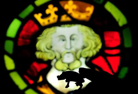 A Richard III boar badge pictured against stained glass