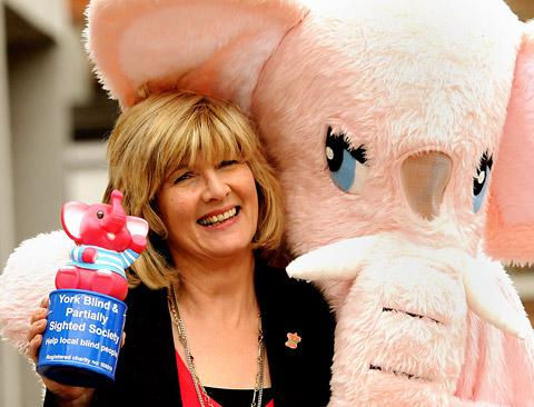 Diane Rowarth, chief officer of the York Blind and Partially Sighted Society, with one of the society's pink elephant mascots