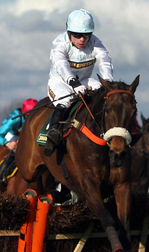 Malcolm Jefferson's Cape Tribulation, pictured in last year's John Smith's Grand National meeting at Aintree, will carry the Gold Cup hopes of the Newstead trainer at the Cheltenham Festival