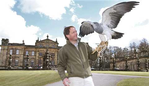 Birds of prey visitor attraction opens to the public from york press