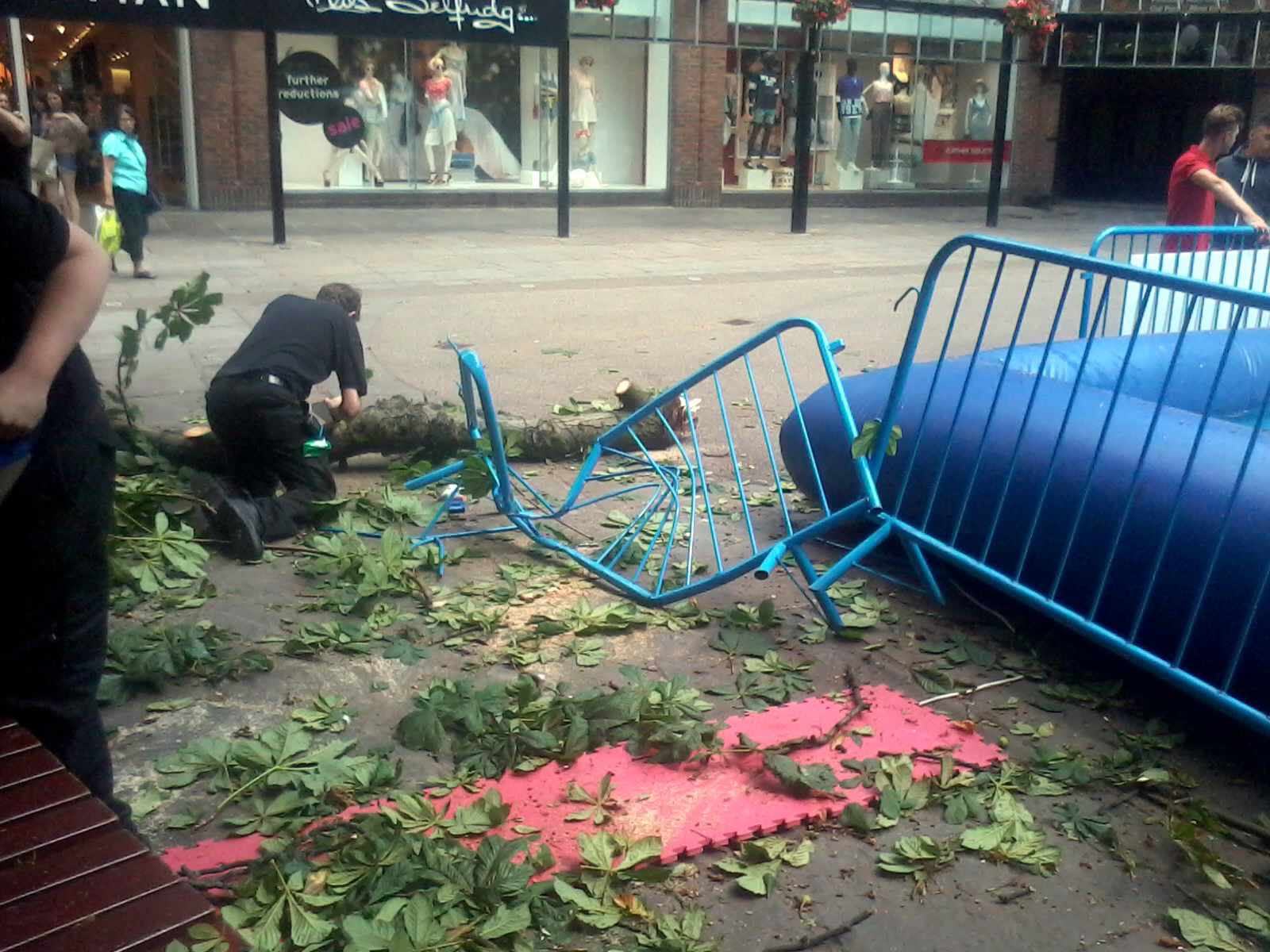 Miraculous escape for two small children as huge branch falls from tree in York city centre