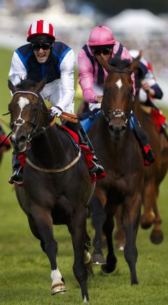 Moviesta triumphs at Goodwood last year