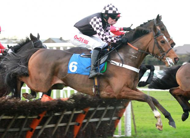 John Quinn's Rutherglen is heading to Cheltenham as part of  a charge from the Highfield stables.  Picture: Alec Russell