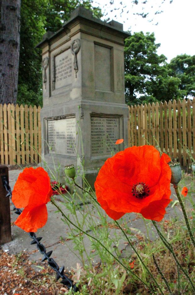 York Press: Wild poppies growing near the war memorial in Salisbury Terrace, Leeman Road