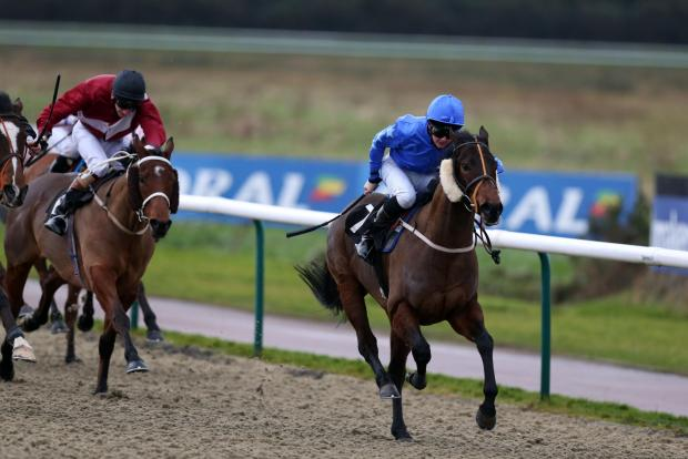Ocean Applause ridden by Joe Doyle wins the Ladbrokes Apprentice Selling Stakes at Lingfield Park Racecourse.
