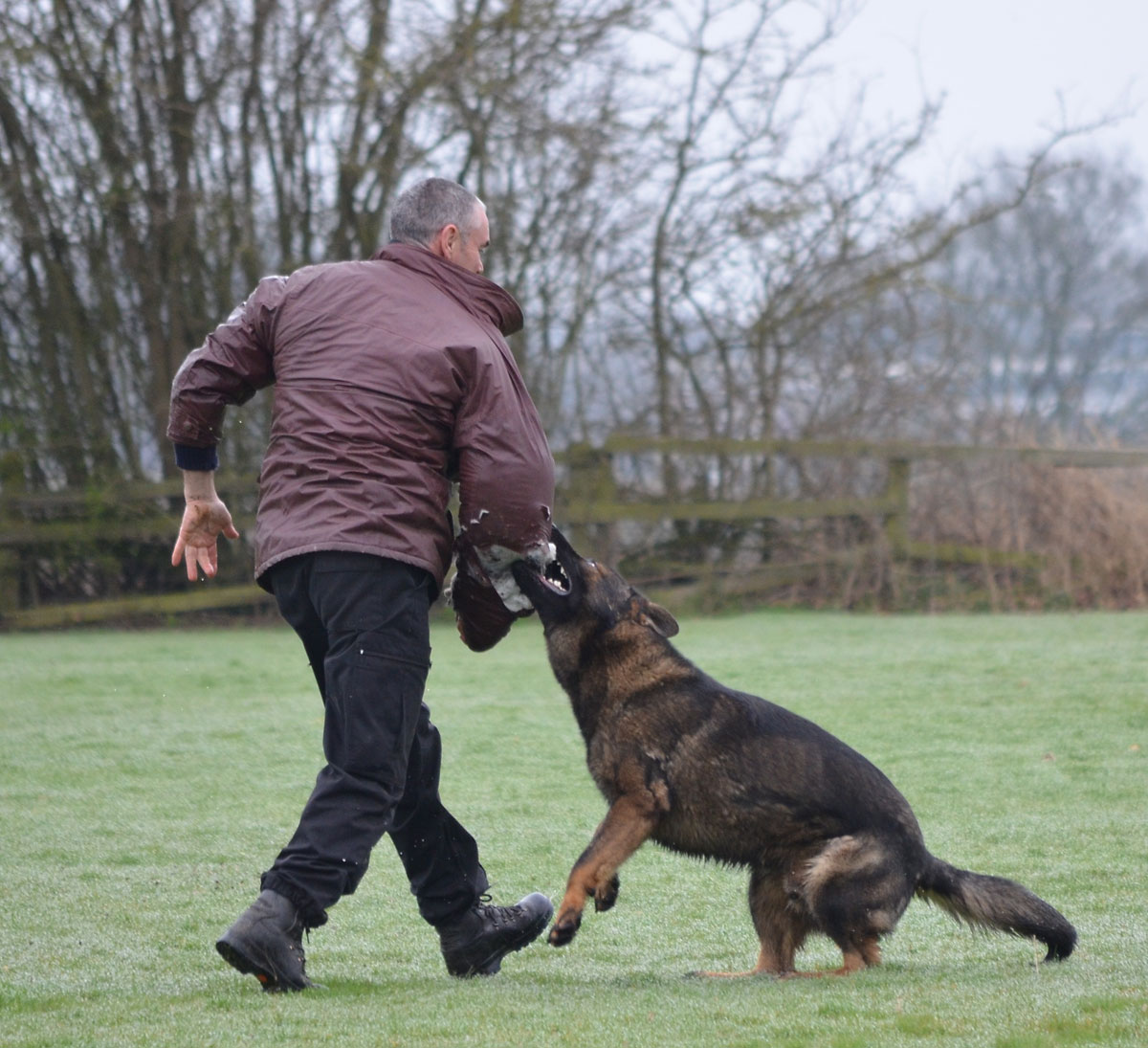 Patto is police force's top dog