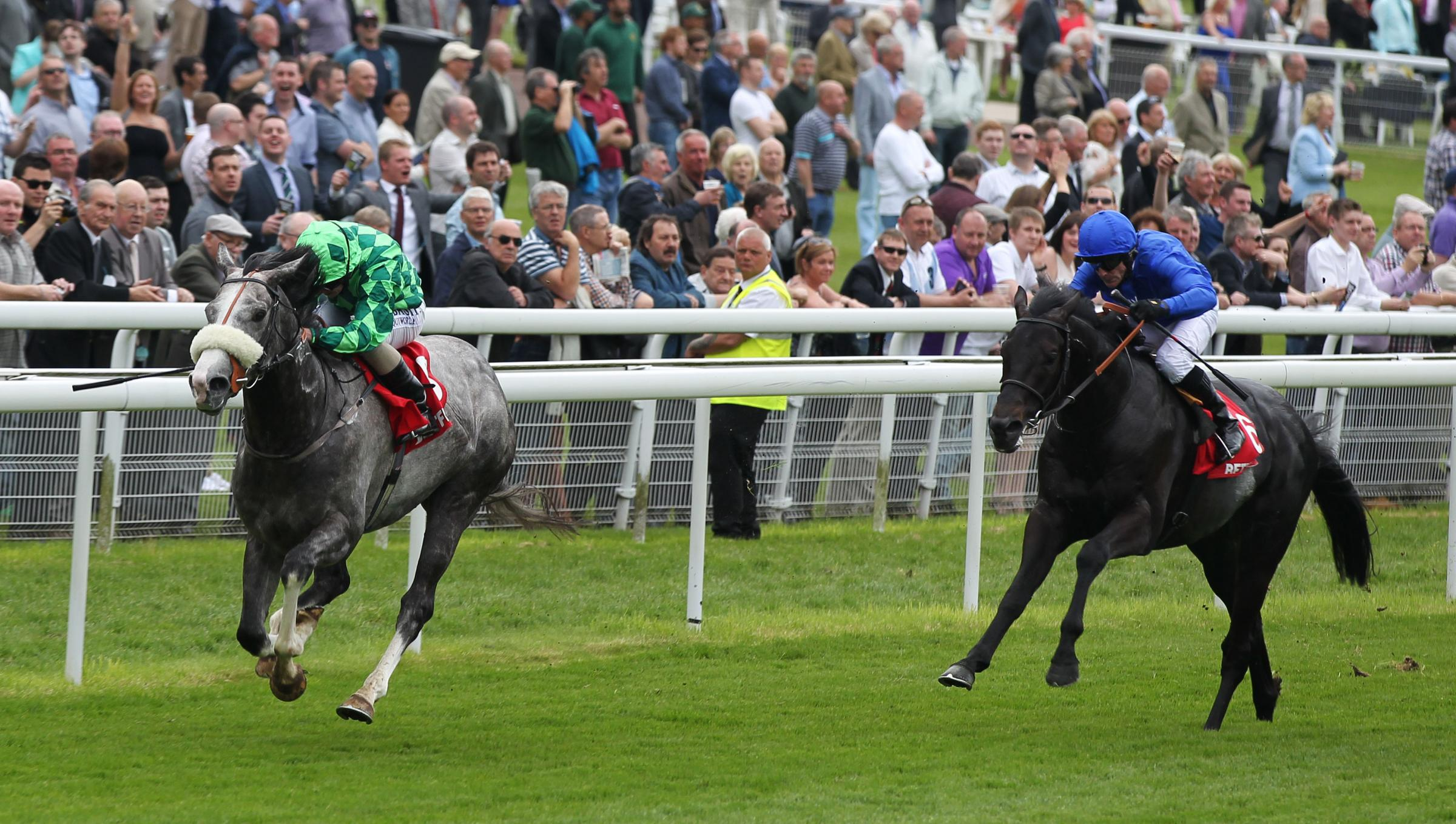 North Yorkshire-trained The Grey Gatsby, left, pulls clear of favourite True Story en route to victory in the Dante Stakes on Knavesmire