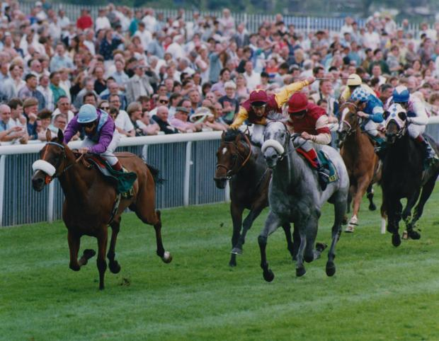Lochsong, above left, leaves the field behind on her way to winning the Nunthorpe Stakes at York Racecourse in 1993